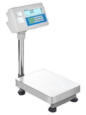 BCT Bench and Floor Counting Scales